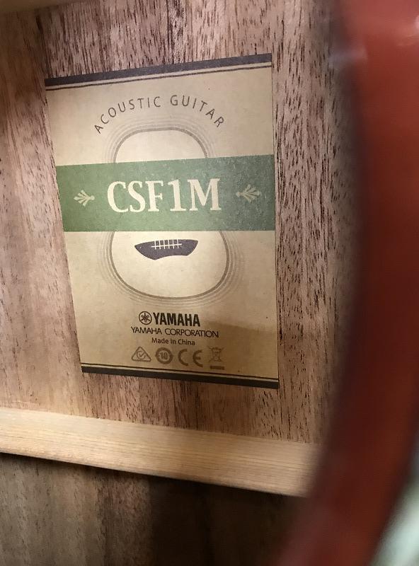 CSF1Mのケース・その他画像