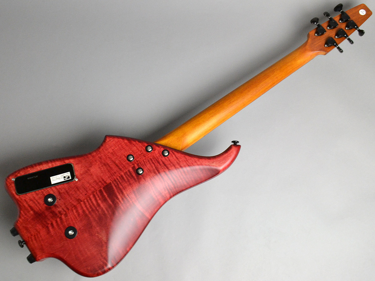 GALAXY Guitar 6stの全体画像(縦)