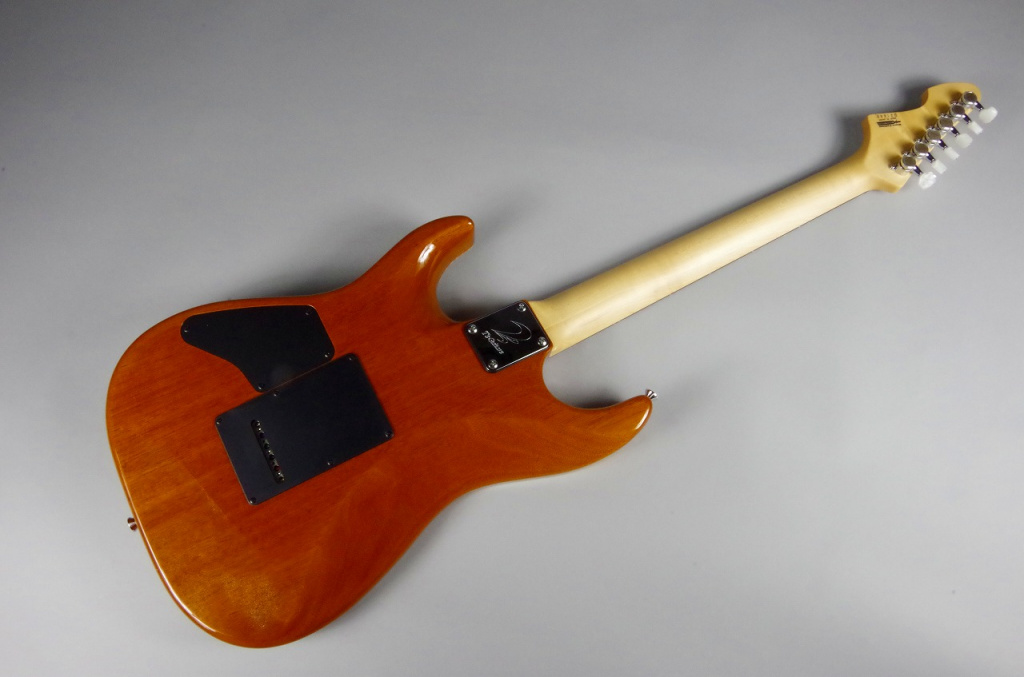 DST-DX22 Tiger eye – T's Guitarsの指板画像