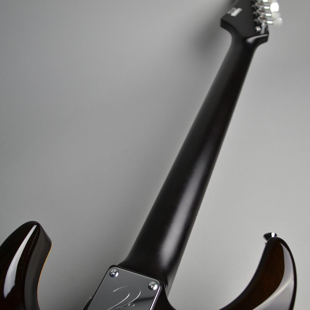 DST-Pro24 Mahogany Limitedのヘッド裏-アップ画像