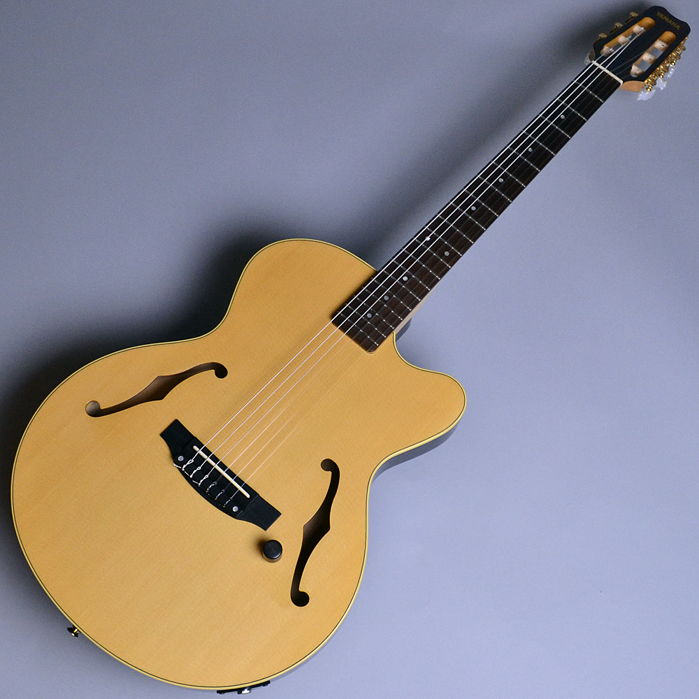 AEX500N Natural(NT) 【S/N:PH29320】のボディトップ-アップ画像
