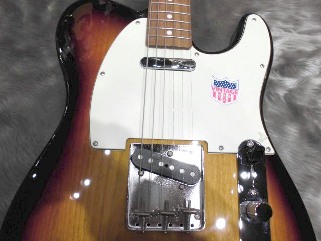 Japan Exclusive Classic 60s Telecaster US Pickupsの全体画像(縦)