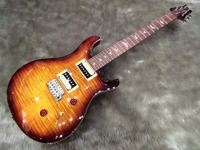 SE Custom 24