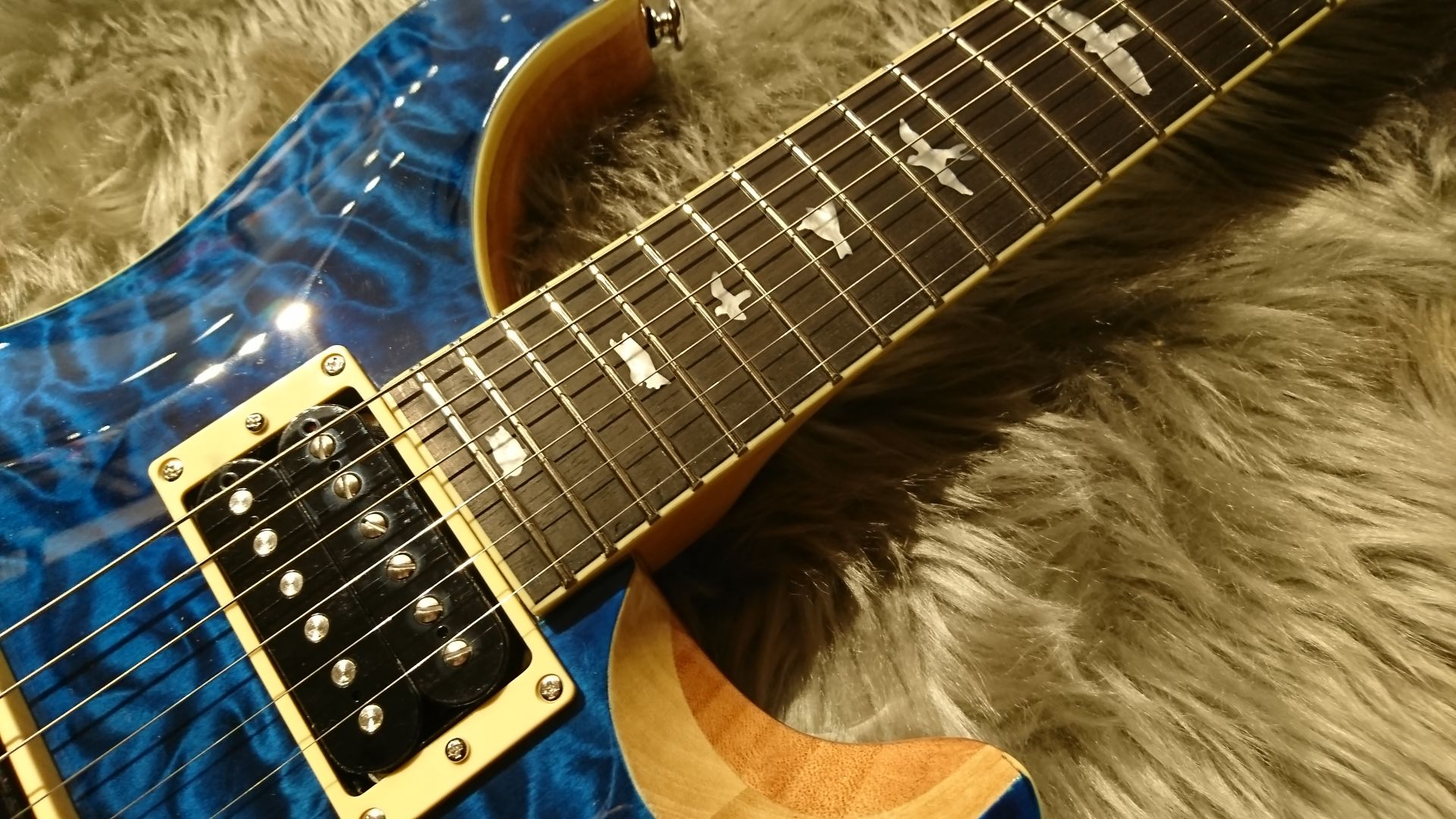 SE CUSTOM 24 QM LTDの指板画像