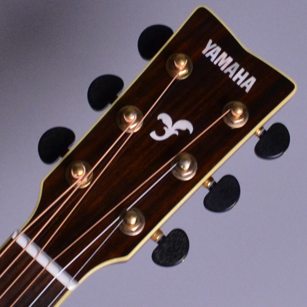 FSX900SC Mocha Black (MBL) 【S/N:HHN200122】のヘッド画像
