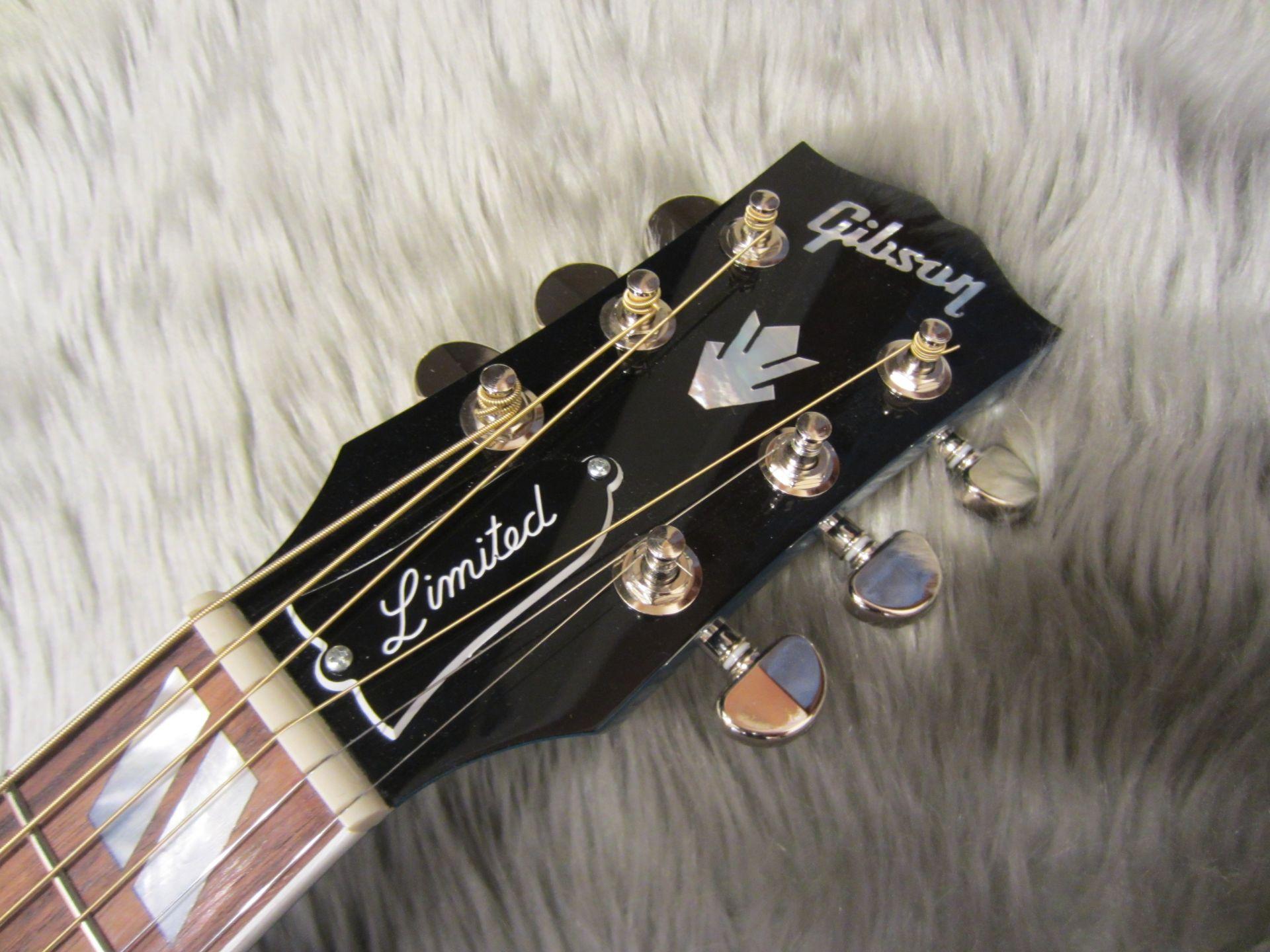 Hummingbird Sky Blueのヘッド画像