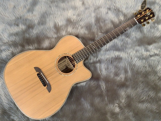 WY-1 Reissue NAT
