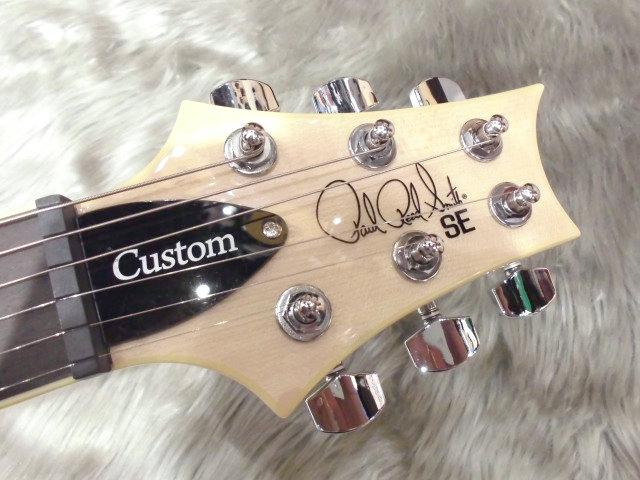SE Custom 24のヘッド画像
