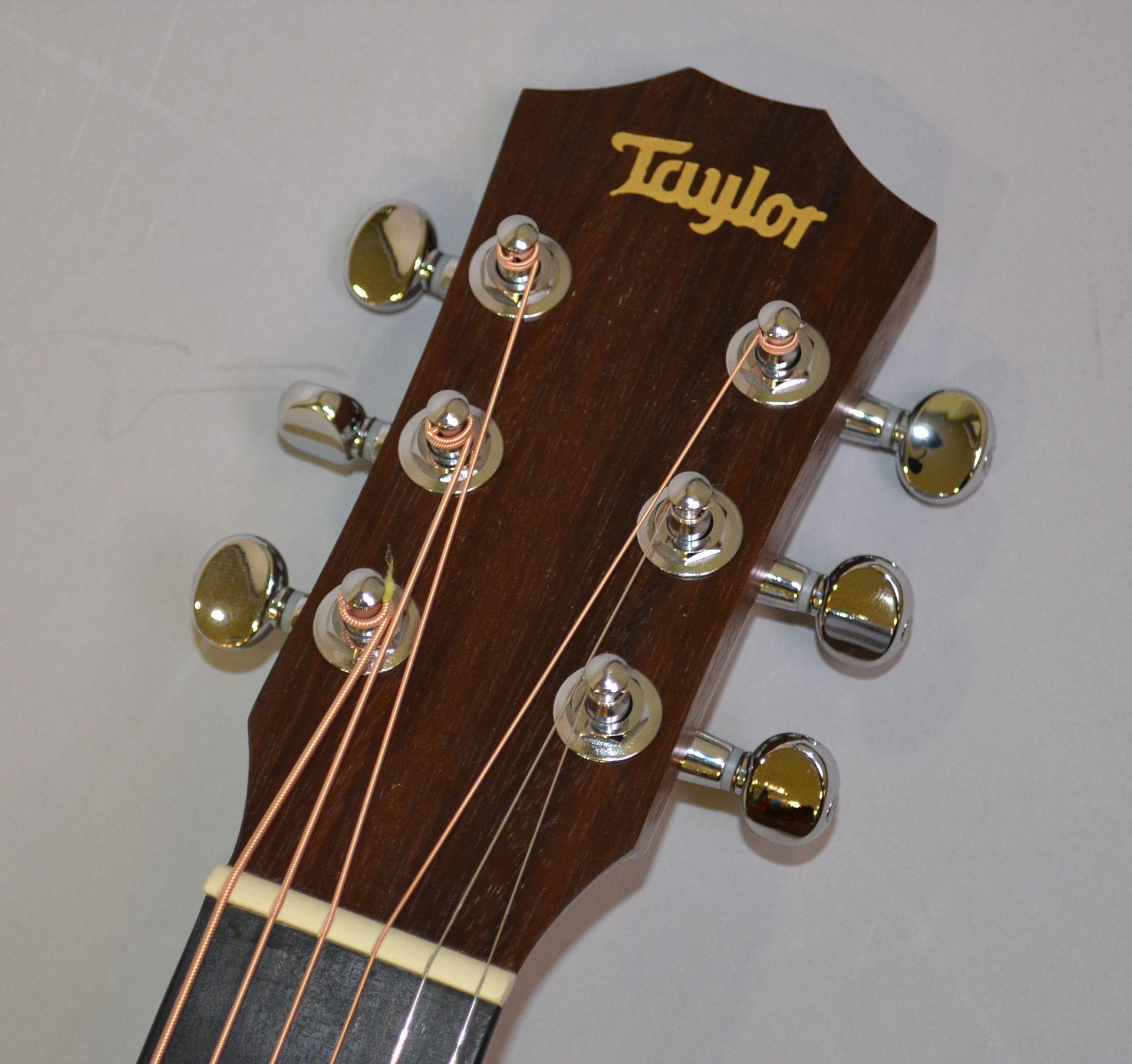 Baby Taylorのヘッド画像