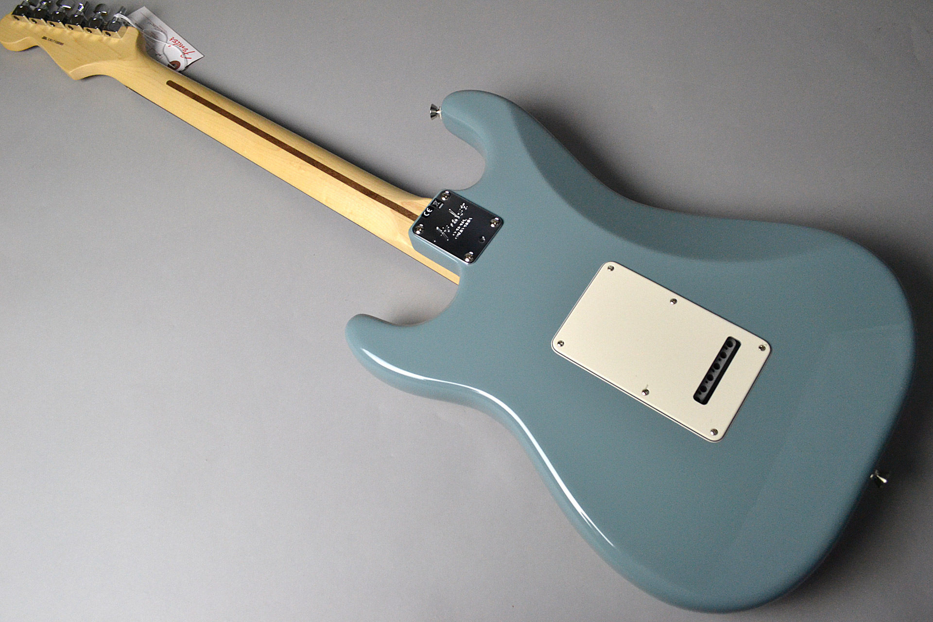 American Professional Stratocaster Sonic Grayのケース・その他画像