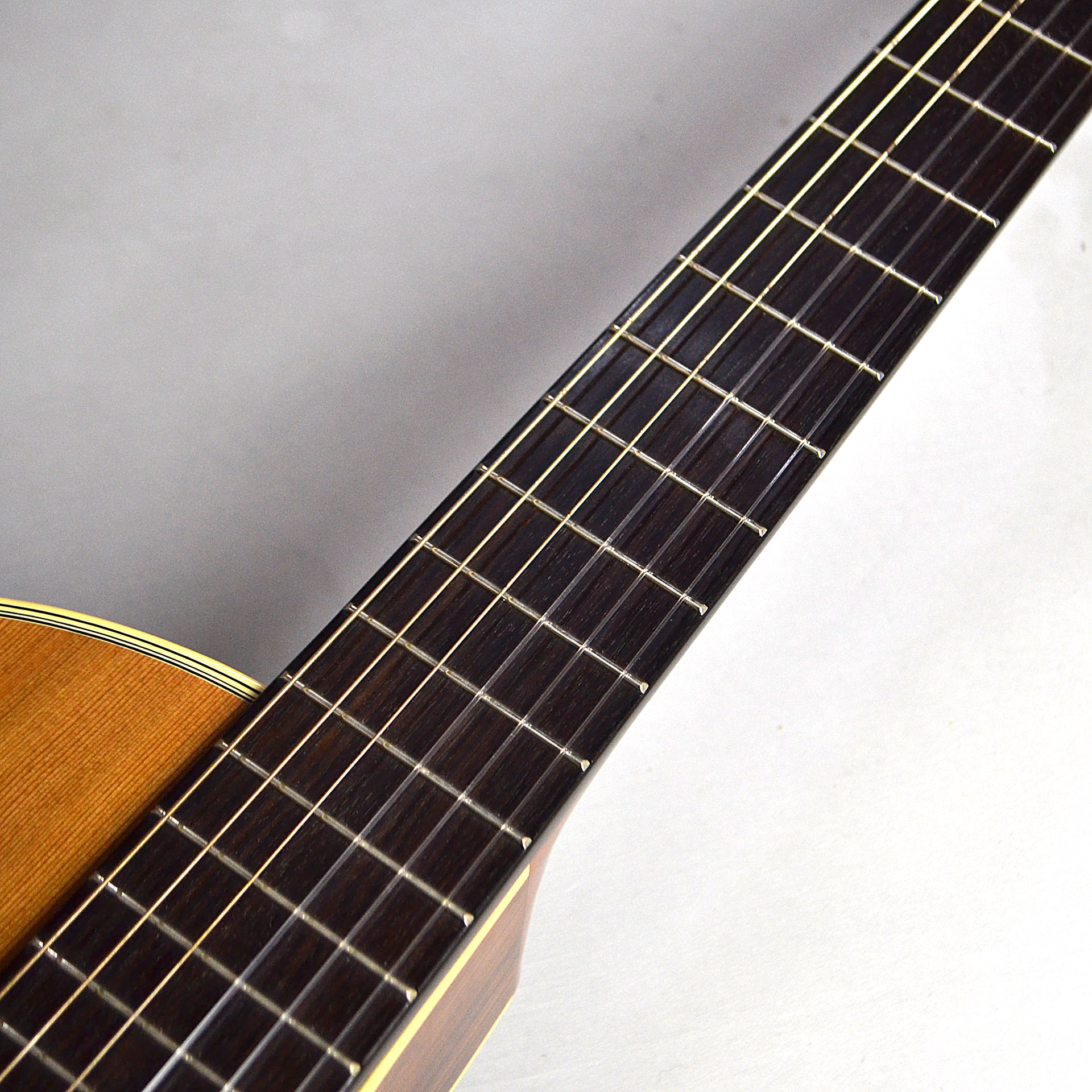 Nylon Series Electric CE-62の全体画像(縦)