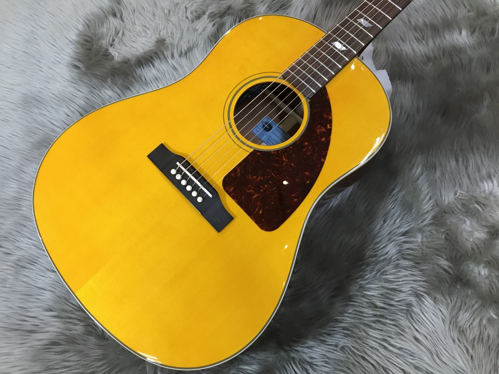 1964 Texan Antique Naturalのボディトップ-アップ画像