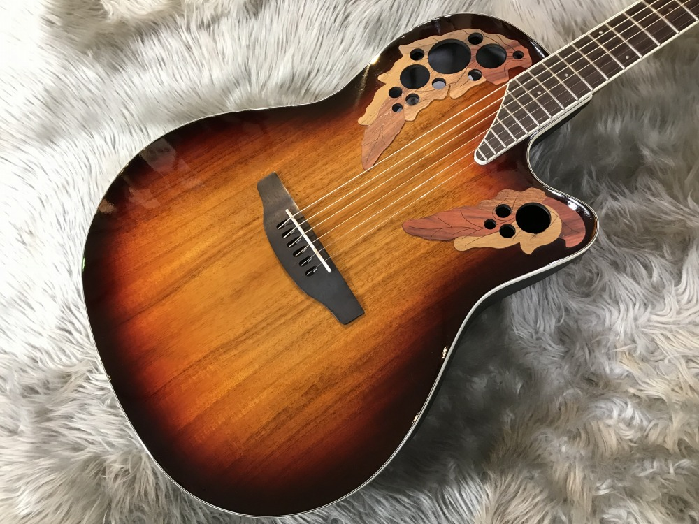 Celebrity Elite Plus Super Shallow Body CE48Pのボディトップ-アップ画像
