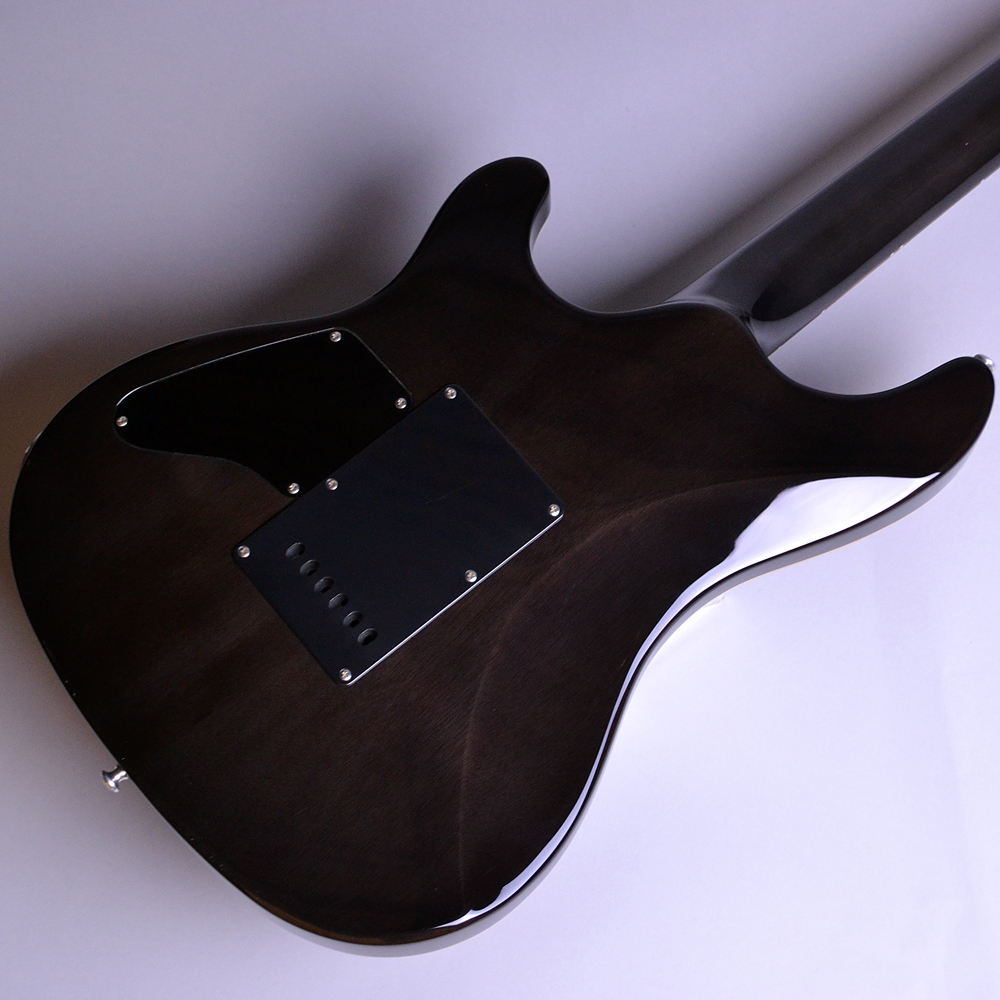 RJ SERIES RJ-1-24-VTR/R See-Through Black (STBK) 【S/N:S1506105】のボディバック-アップ画像