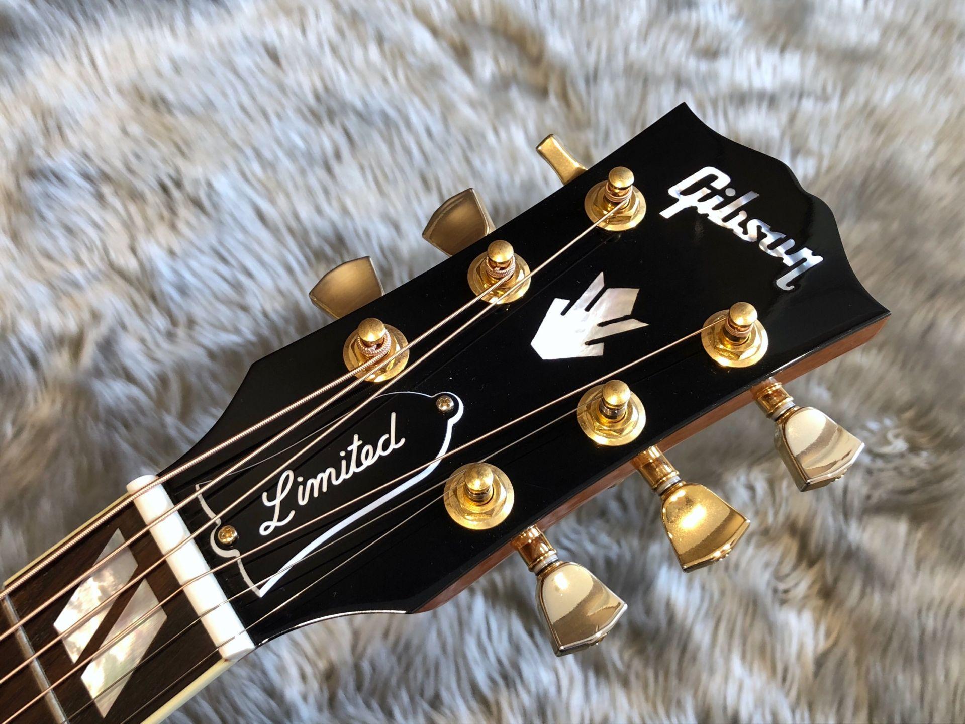 Hummingbird Figured Mahoganyのヘッド画像