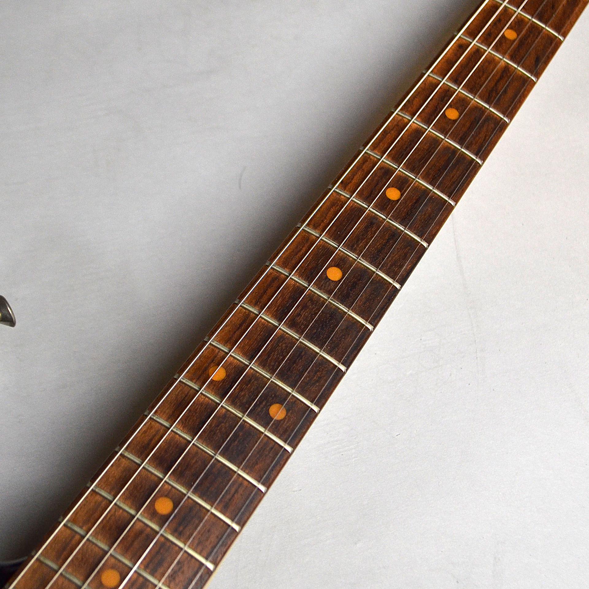 American Vintage 59 Stratocasterの全体画像(縦)