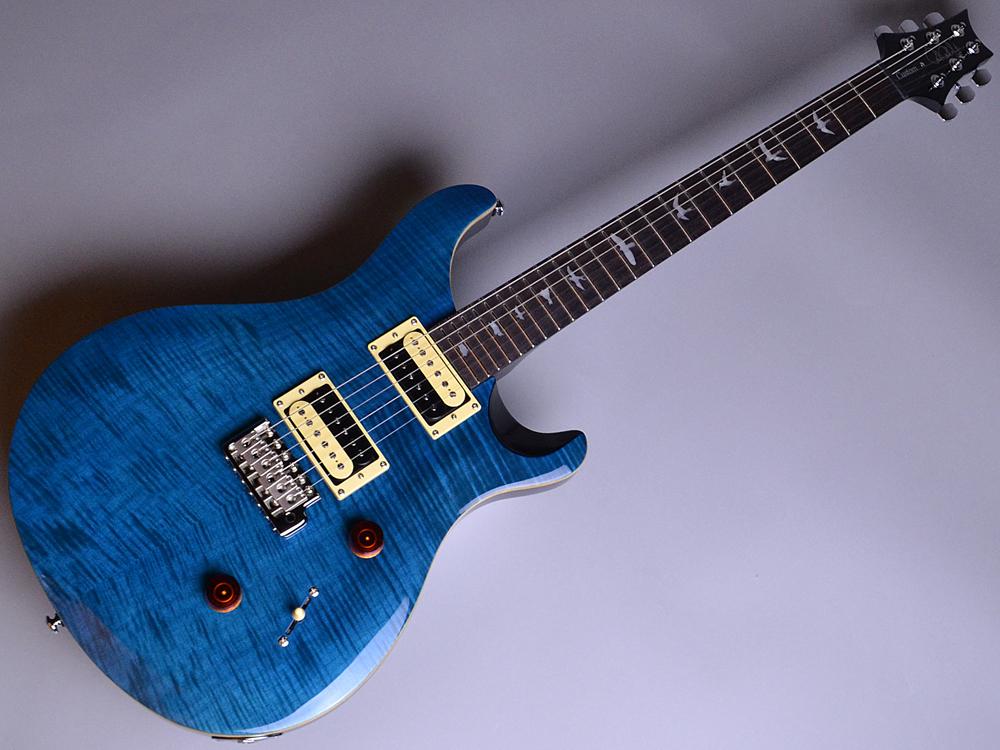 SE CUSTOM 24 N Blue Matteo (BT)【S/N:R16061】