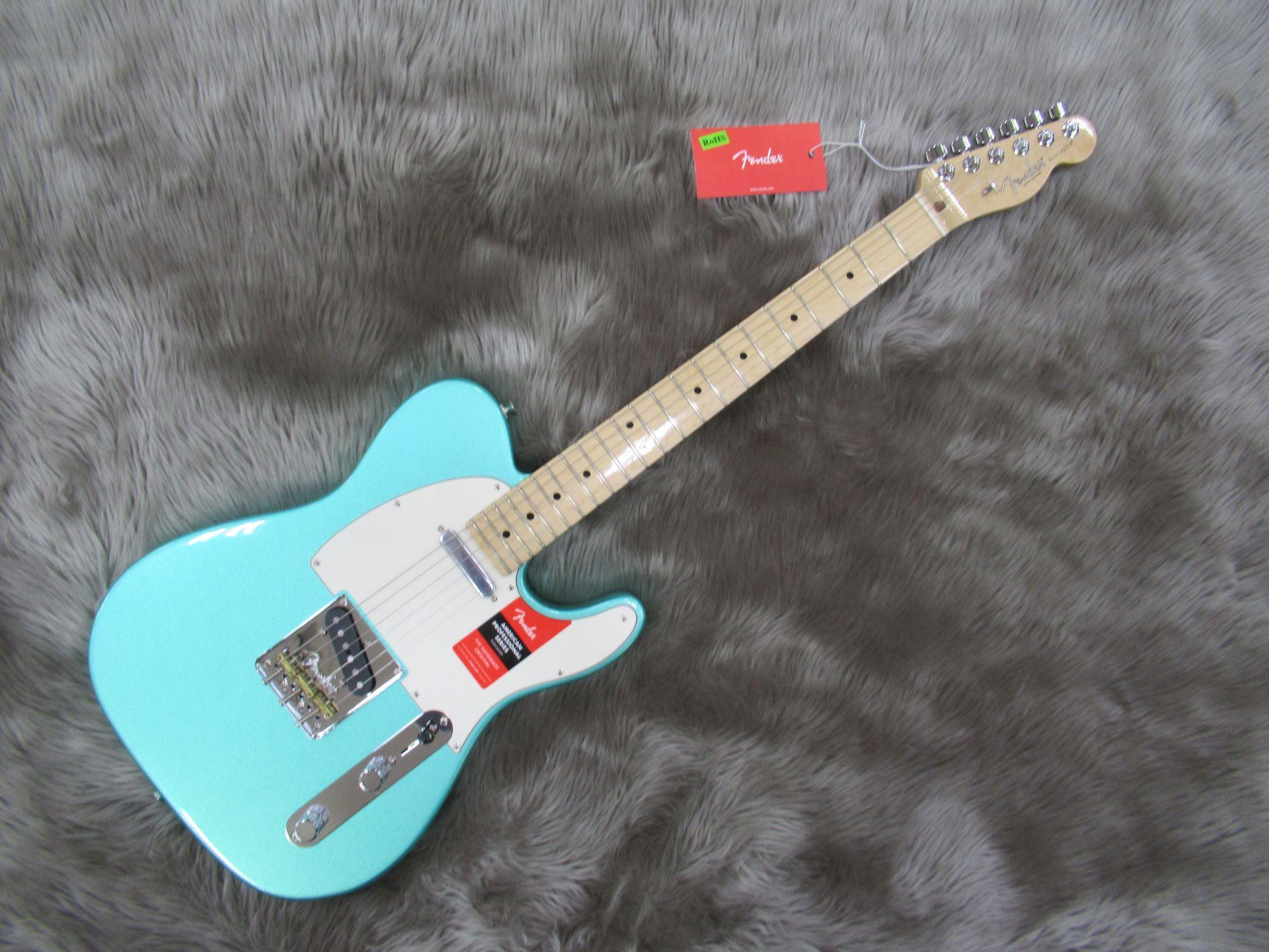 Fender  AM PRO TELE MN 写真画像