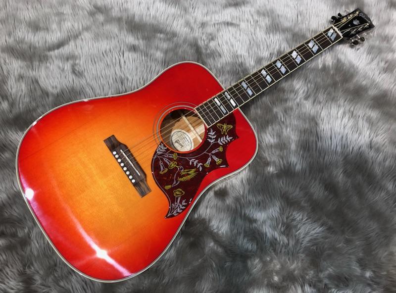 Gibson  Hummingbird 写真画像