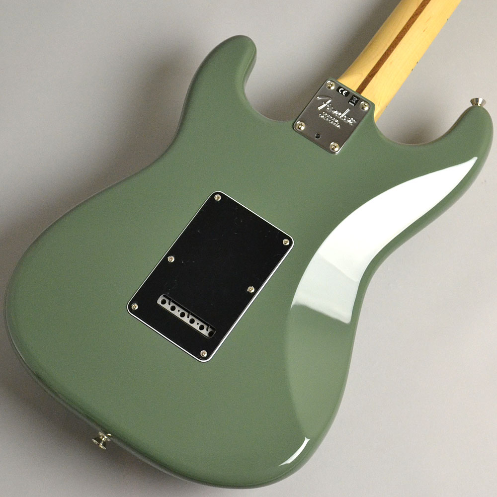 AMERICAN PROFESSIONAL STRATOCASTER/MAPLE Antique Oliveのボディバック-アップ画像