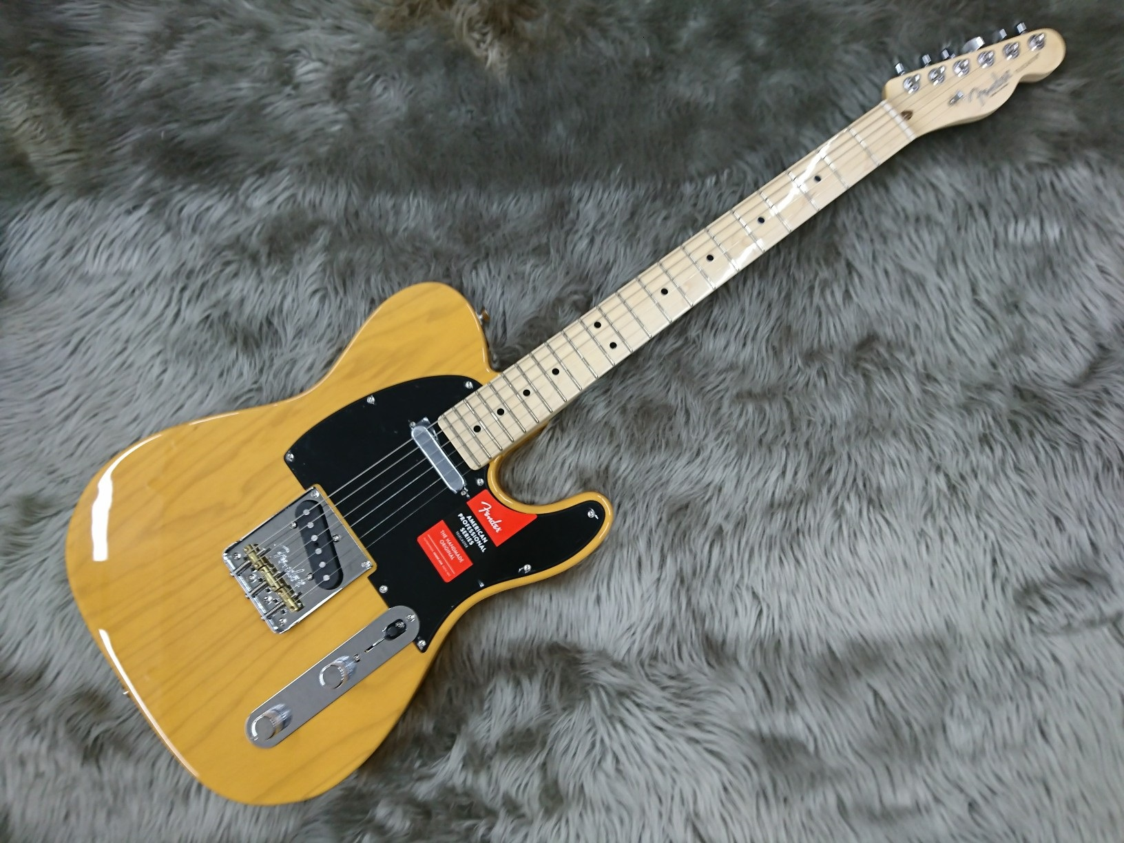 AMERICAN PROFESSIONAL TELECASTER MN