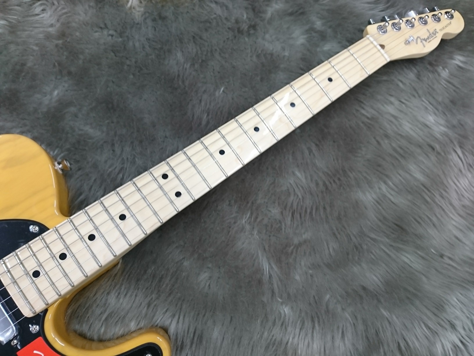 AMERICAN PROFESSIONAL TELECASTER MNの指板画像