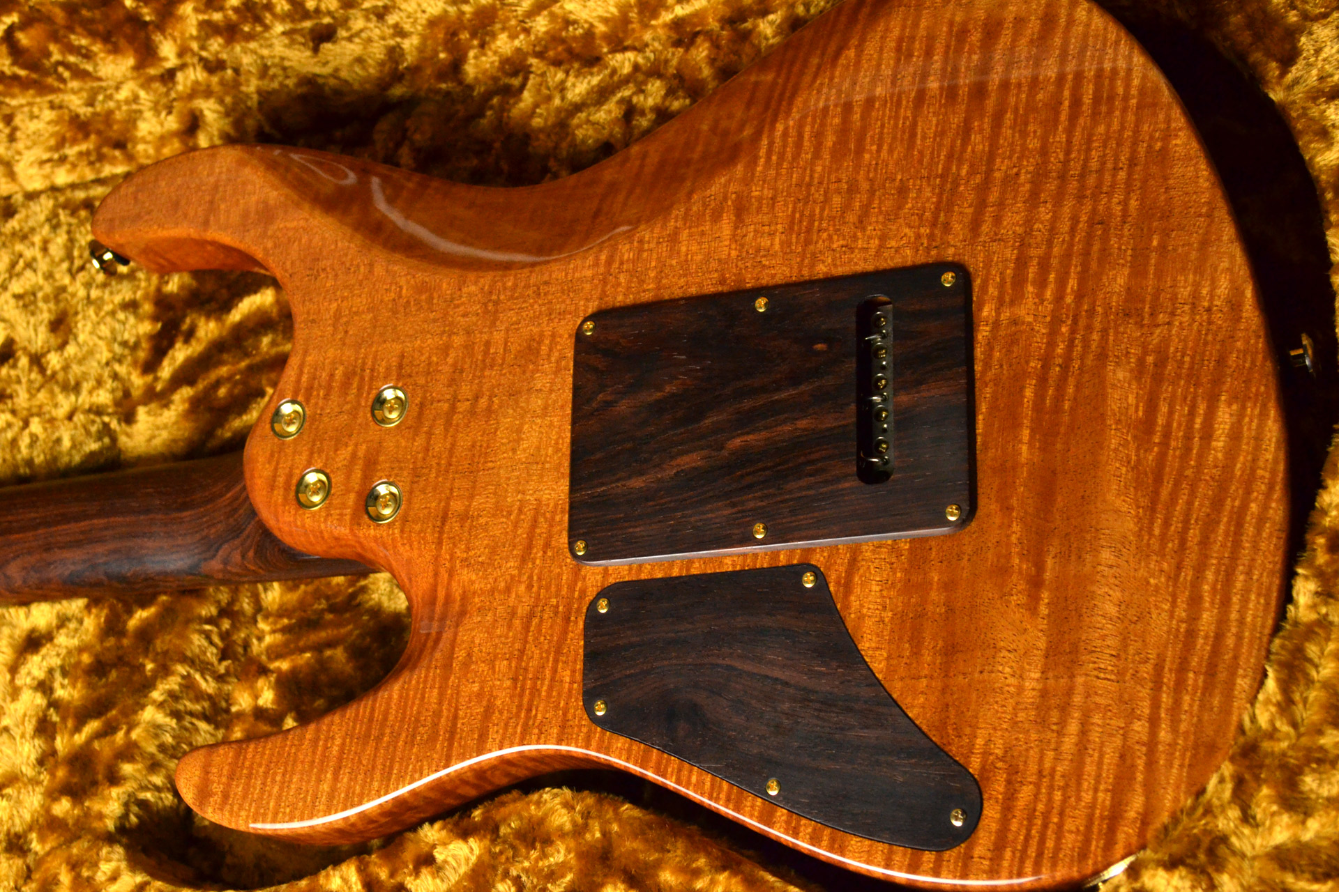 Modern Carved Top Redwood 2015 Collection Limitedのボディバック-アップ画像