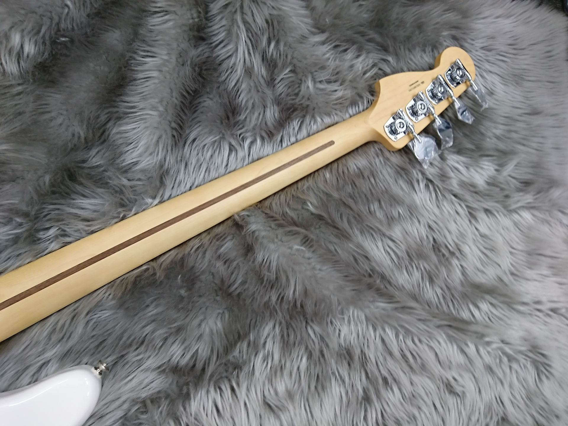 PLAYER PRECISION BASS PFのケース・その他画像