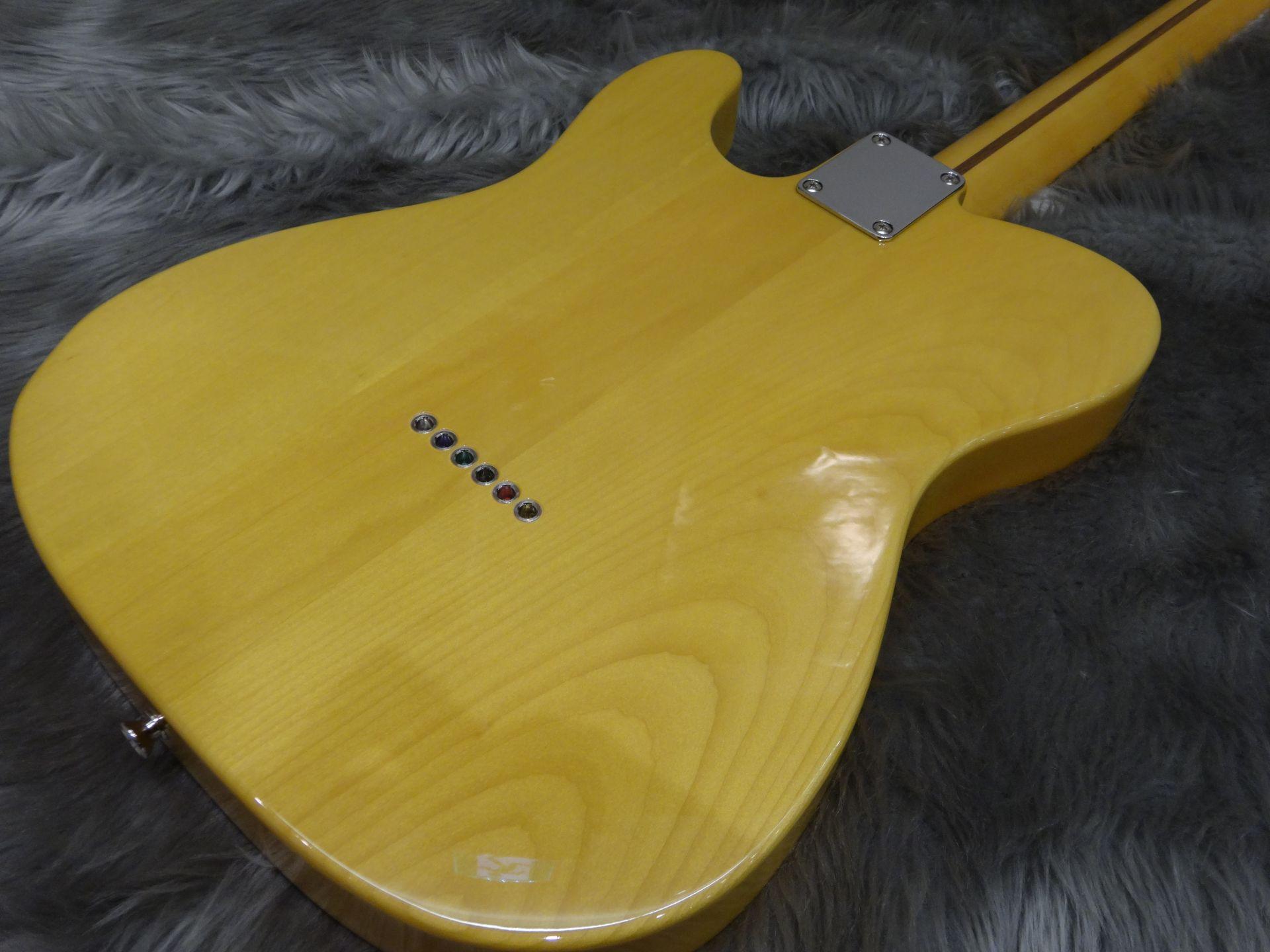 TRAD 50S TELE Fenderのボディバック-アップ画像