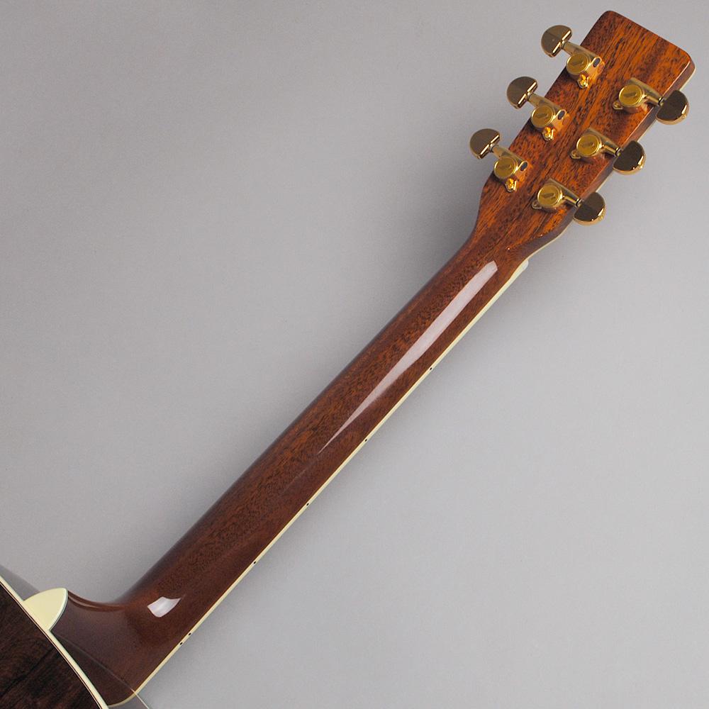 MORRIS M-101SP/NAT アコースティックギター 【モーリス 限定モデル】【ビビット南船橋店】【アウトレット】のヘッド裏-アップ画像