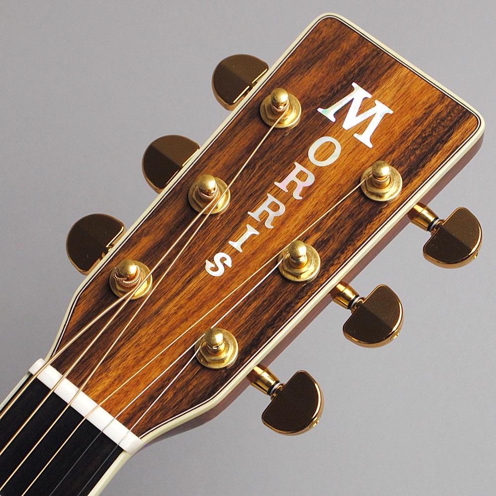 MORRIS M-101SP/NAT アコースティックギター 【モーリス 限定モデル】【ビビット南船橋店】【アウトレット】のヘッド画像