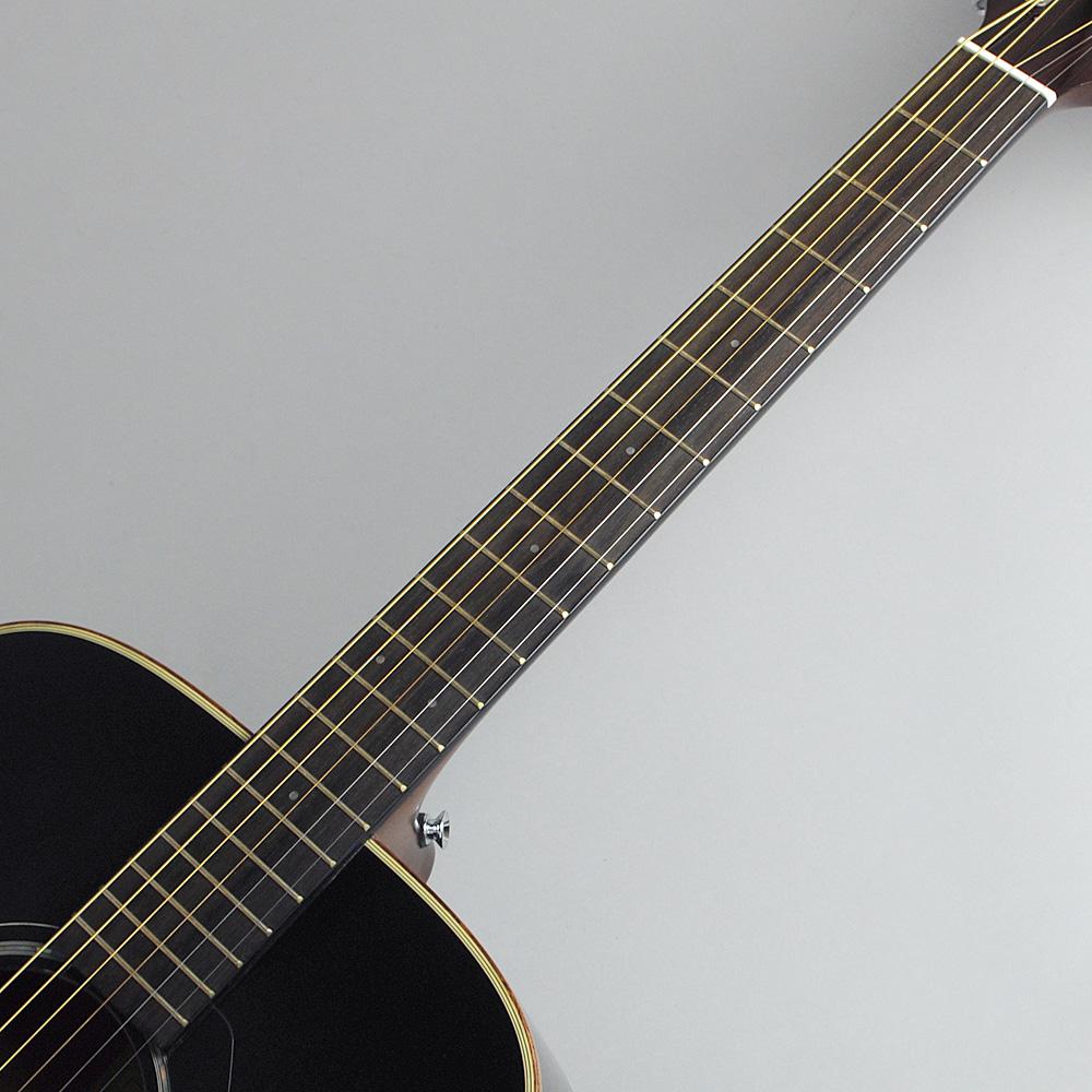 YAMAHA FGX865 TBL エレアコギター 【ヤマハ 島村楽器限定モデル】【ビビット南船橋店】【アウトレット】の指板画像
