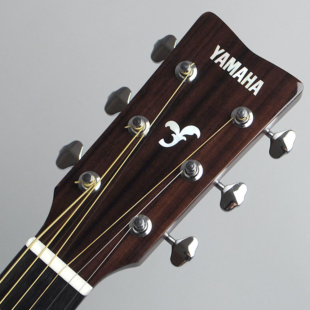 YAMAHA FGX865 TBL エレアコギター 【ヤマハ 島村楽器限定モデル】【ビビット南船橋店】【アウトレット】のヘッド画像