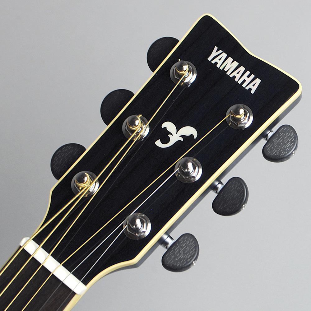 YAMAHA FSX825C TQ エレアコギター 【ヤマハ 島村楽器限定モデル】【ビビット南船橋店】【アウトレット】のヘッド画像