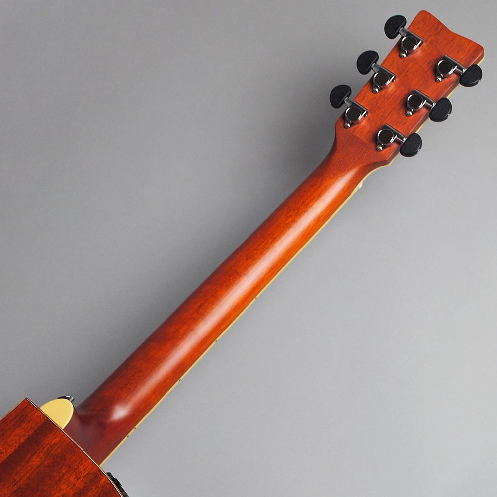 YAMAHA FSX825C AB エレアコギター 【ヤマハ 島村楽器限定モデル】【ビビット南船橋店】【アウトレット】のヘッド裏-アップ画像