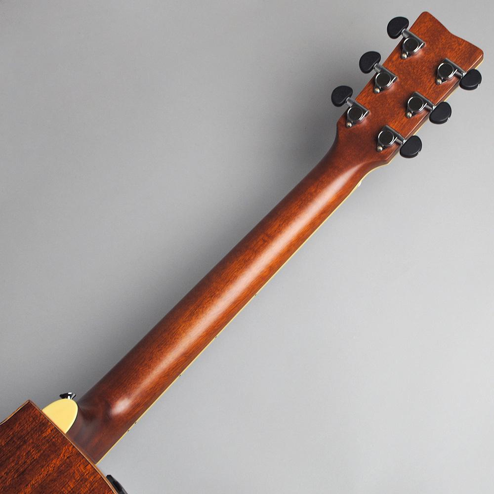 YAMAHA FSX825C BS エレアコギター 【ヤマハ 島村楽器限定モデル】【ビビット南船橋店】【アウトレット】のヘッド裏-アップ画像