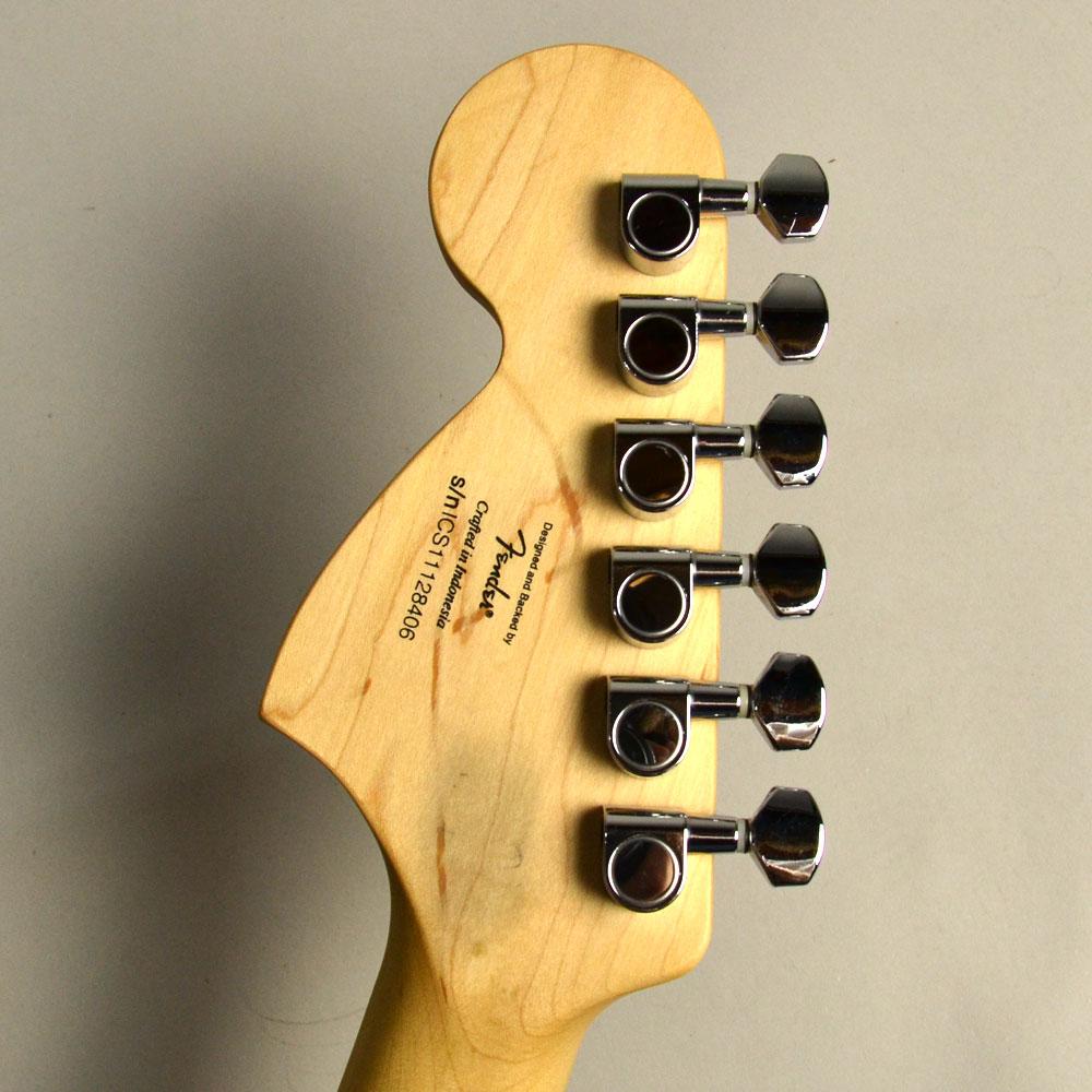 Standard Stratocaster/Mapleの指板画像