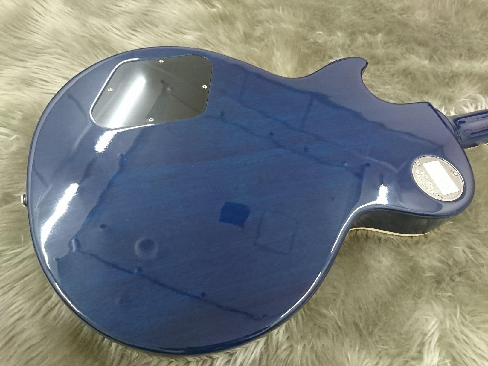 1959 Les Paul Standard Aqua Blue Glossのボディバック-アップ画像