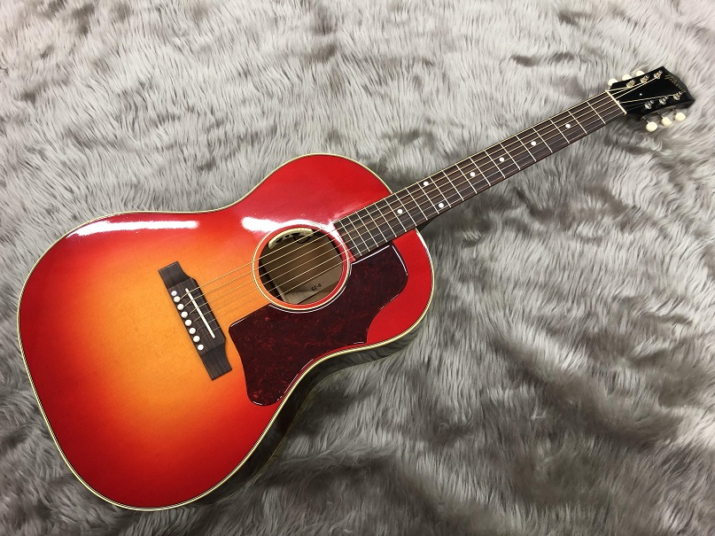 Gibson  B25 VCS w/ANTHEM 写真画像