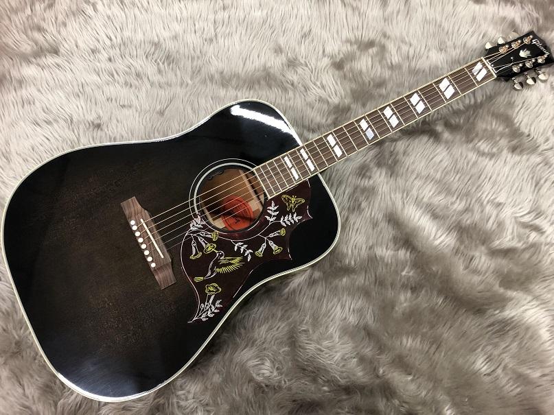 Gibson  HUMMINGBIRD SNAKEBIT 写真画像