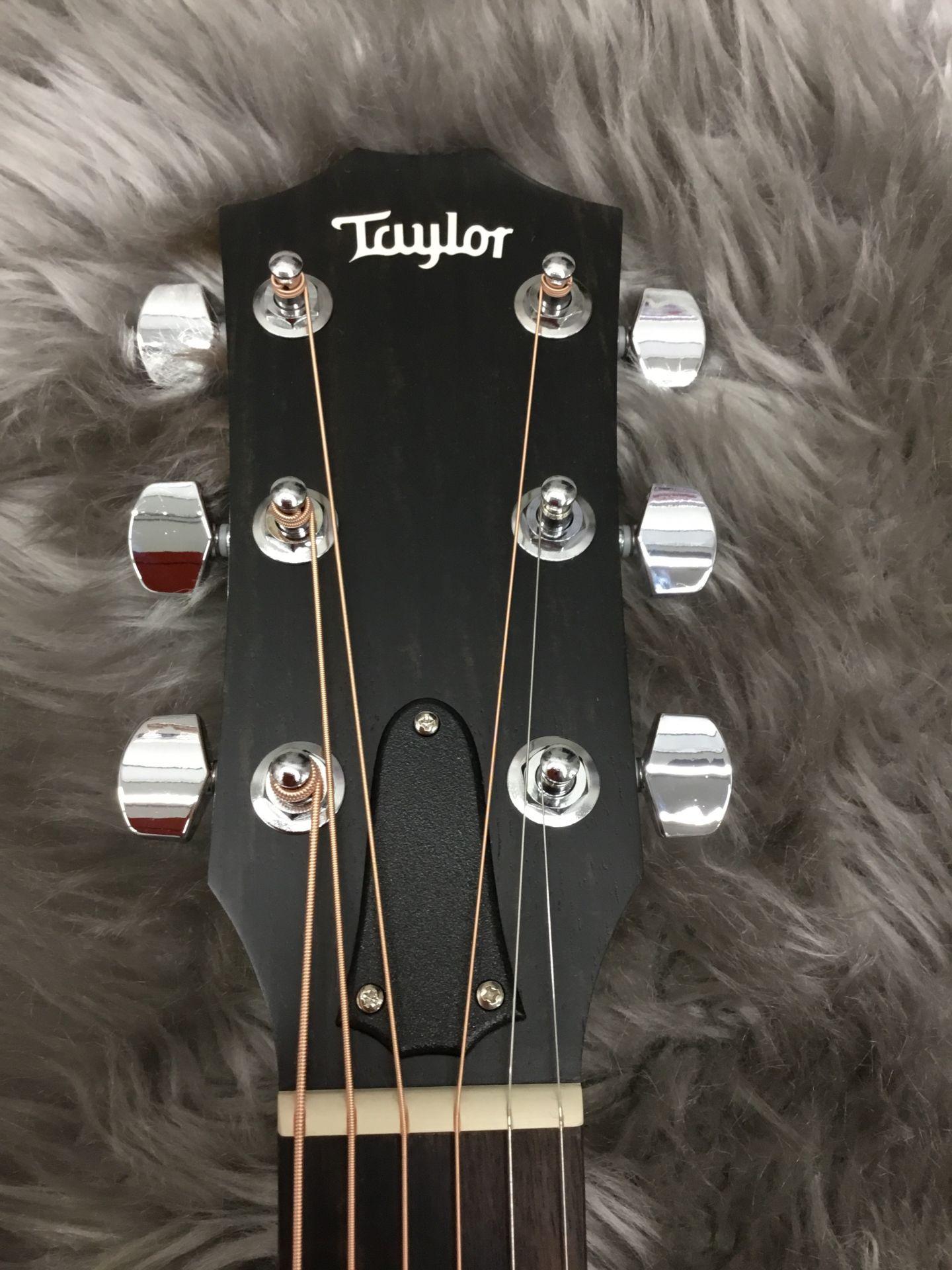 Taylor/114ce Walnut 2017のヘッド画像