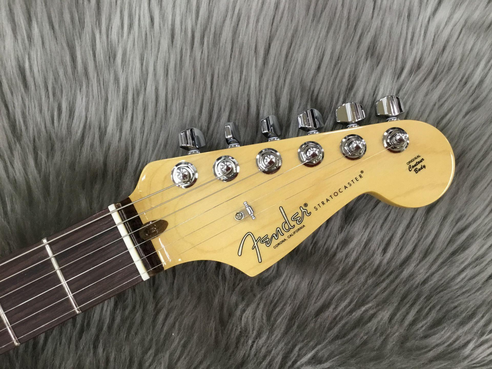 American Professional Stratocasterのヘッド画像