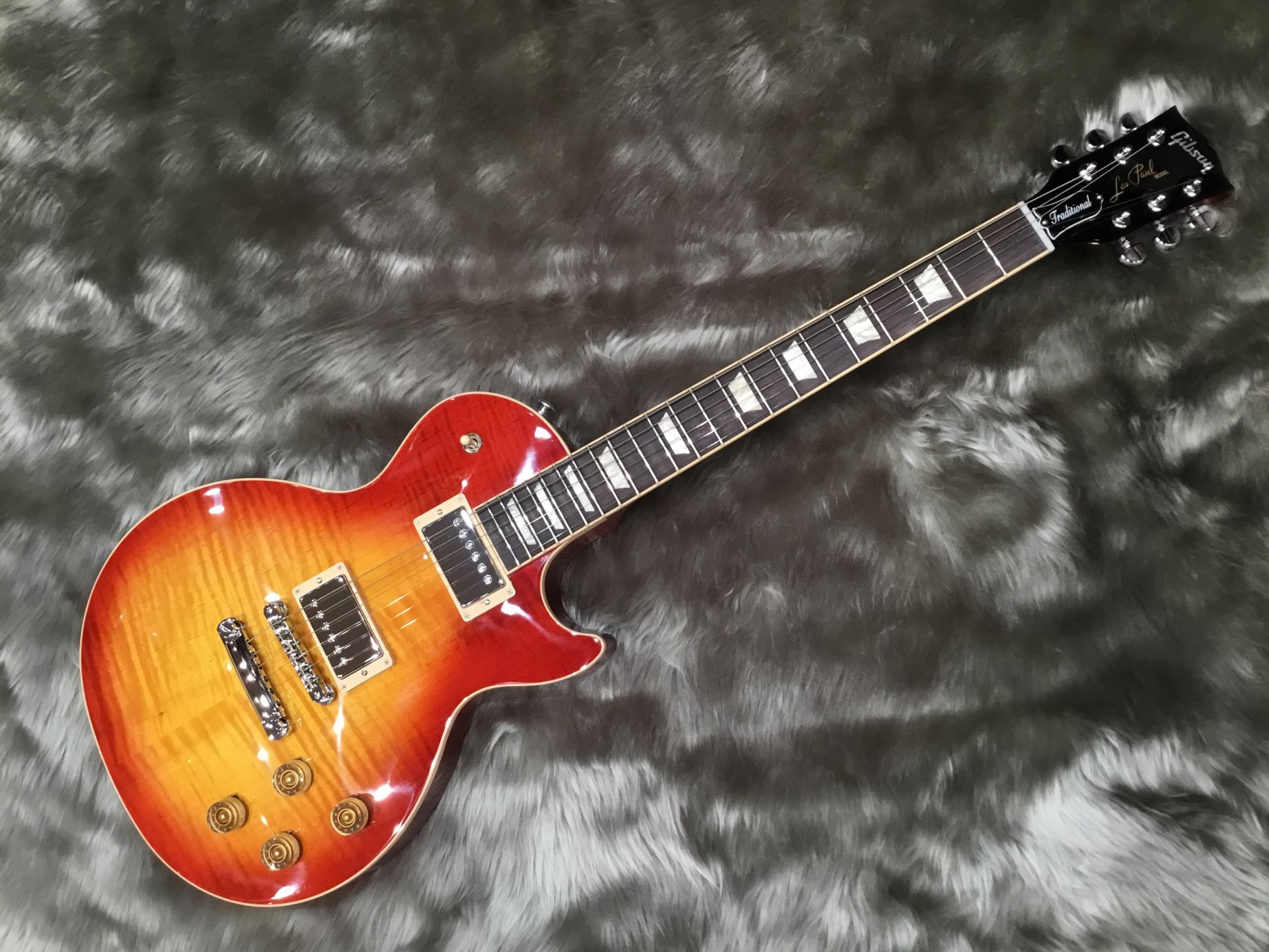 LP Traditional PLUS
