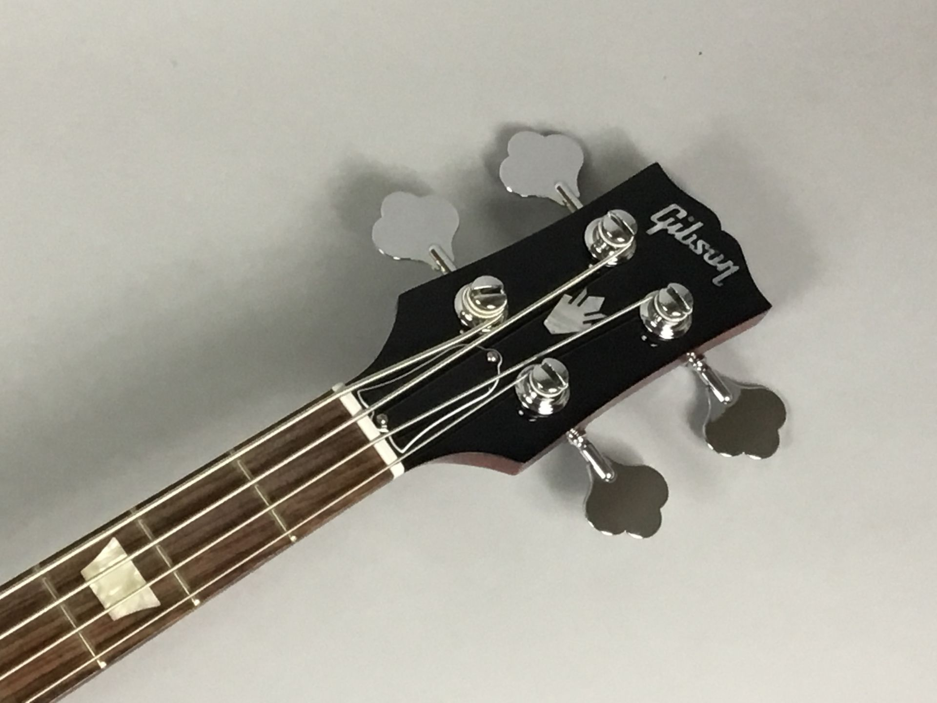 SG STD Bass 2018のヘッド画像
