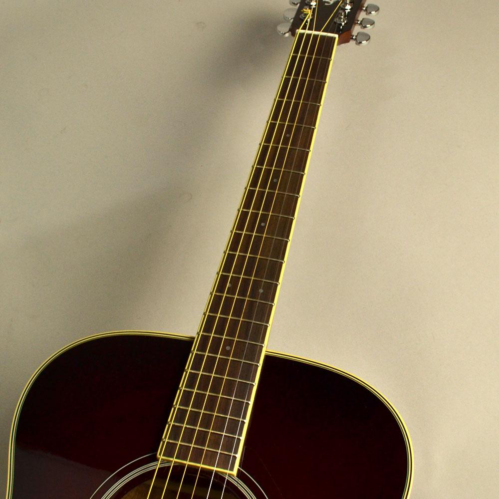 Trans Acoustic FS-TAのボディバック-アップ画像