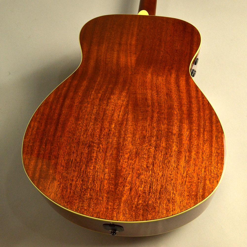 Trans Acoustic FS-TAのヘッド裏-アップ画像