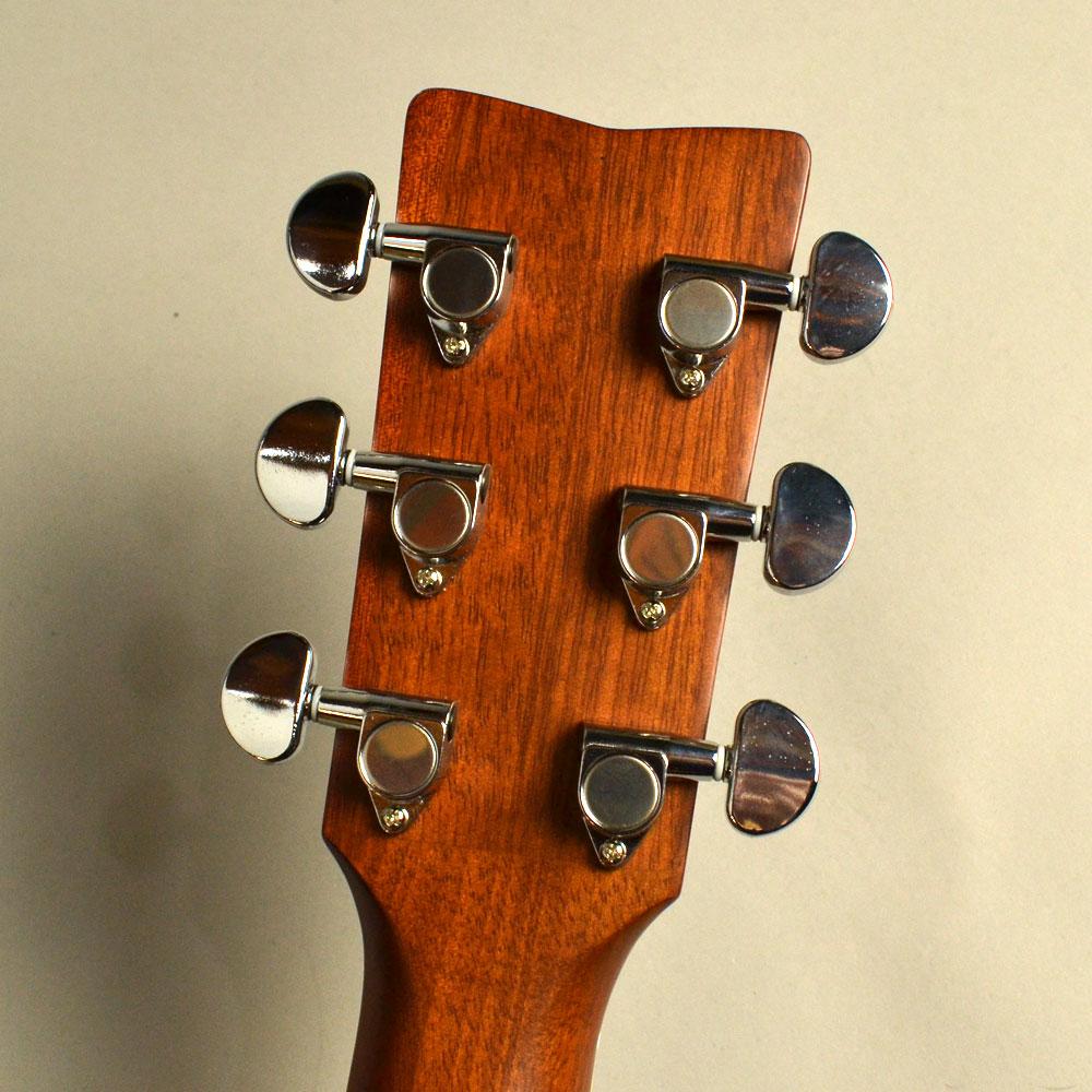 Trans Acoustic FS-TAの指板画像