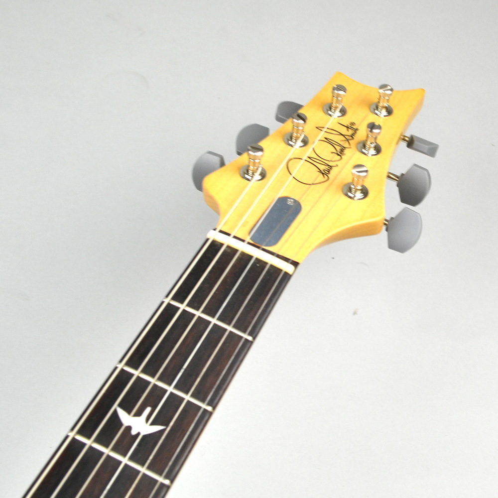Silver Sky John Mayer Signature Model J3 HORIZONのボディバック-アップ画像