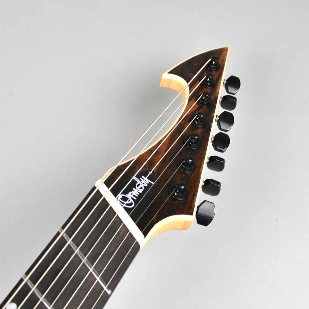 HypeGTR MULTISCALE Macassar Ebony Exotic 7stringsのボディバック-アップ画像