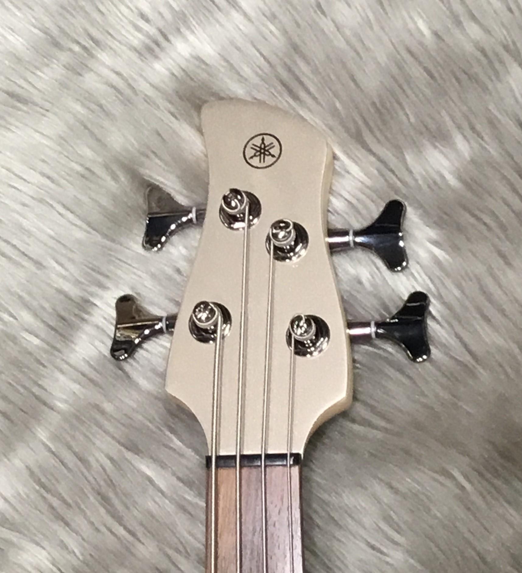 TRBX304のヘッド画像